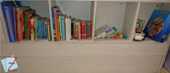 MdGZ_Bibliotheque