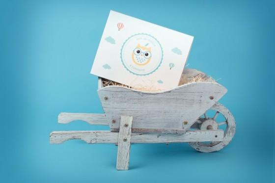 pomdereinette box-bébé-10-1024x683